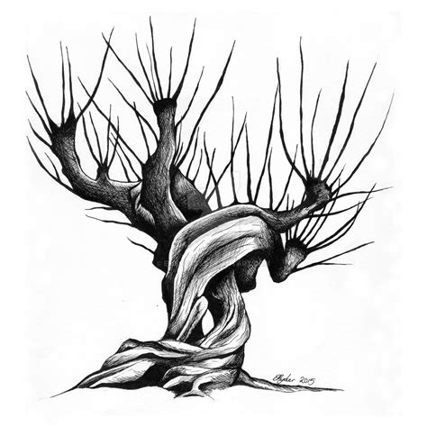 whomping willow  emilyr  deviantart