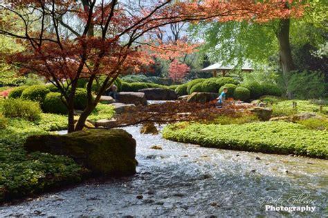 Japanischer Garten Augsburg by Fr 252 Hling Im Botanischen Garten Augsburg Das Ist Etwas