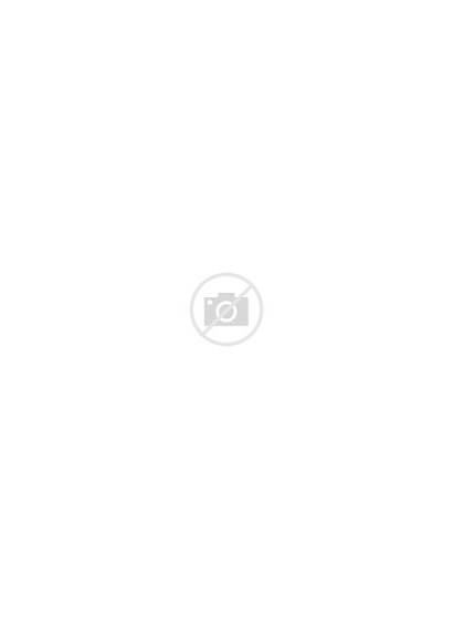 Clic Ballerina Gouden Ballet Pumps Omoda