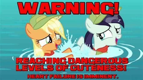 Hnng Meme - who s a cute pony fimfiction