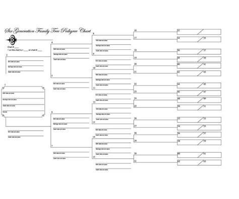 Standard Pedigree Chart Symbols