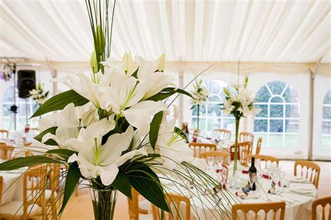How Much Does Draping Cost For A Wedding - how much does wedding draping cost howmuchisit org