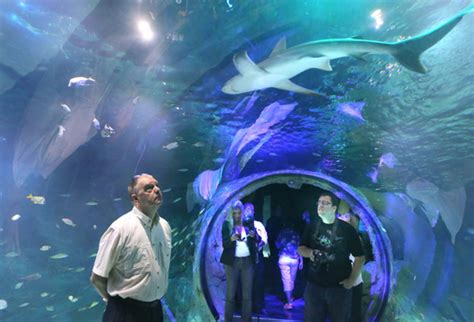 sea aquarium promo code attraction name discount tickets save up to 55