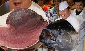 Giant bluefin tuna sold for a record £472,000 in Japan ...