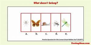E Herd Test : can your child solve it which picture doesn 39 t belong with the group olsat practice ~ Watch28wear.com Haus und Dekorationen