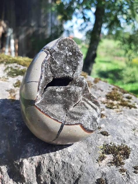 Septariāns. 7 x 10 cm. - Akmeņi - Ināras Krūmiņas rotu ...