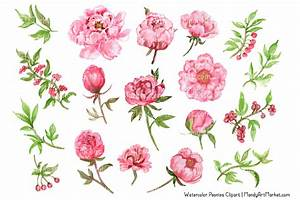Water Color clipart chinese flower - Pencil and in color ...