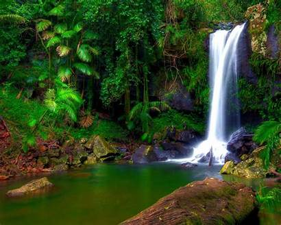 Waterfall Tropical Jungle Desktop Water Pool Trees