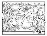 Coloring Pages Bunny Easter Themed Challenges sketch template