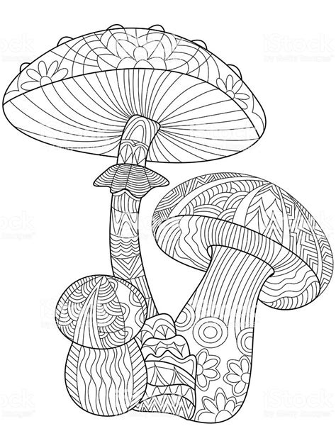 mushroom coloring vector  adults stock vector art