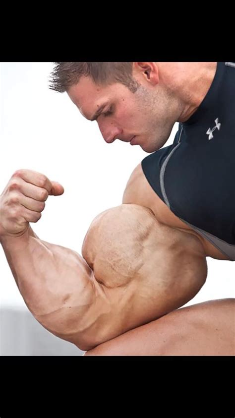 chair sit ups bodybuilding 100 chair sit ups bodybuilding is the