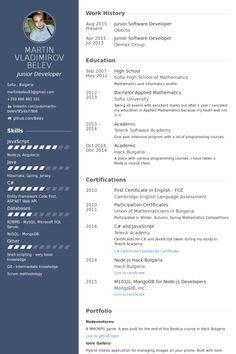 executive senior quantity surveyor resume  resume