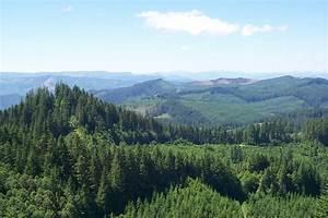Oregon Landscape BLM Oregon
