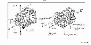 Nissan Rogue Engine Crankshaft Seal  Rear   Assembly