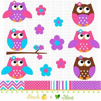 Owl Clip Clipart Graphics