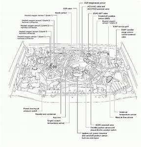 1995 Nissan Pickup Diagram  Nissan  Auto Parts Catalog And