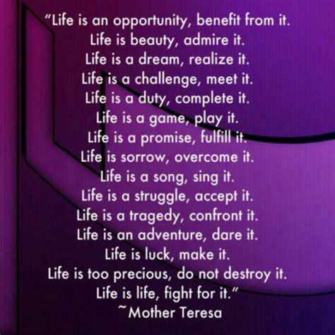 mother teresa pro life quotes quotesgram