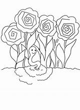 Coloring Peony Printable Pages sketch template