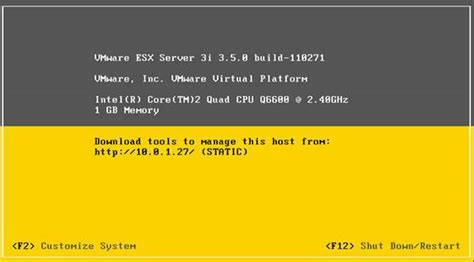 Esx Console by How To Access The Vmware Esxi Console