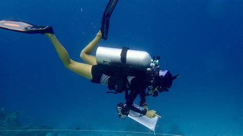 Dream Job - Marine Biologist at Six Senses Laamu, Maldives