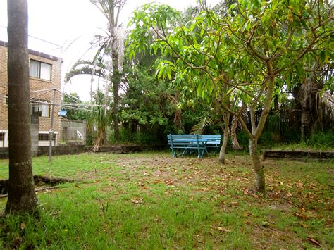 Backyard Small Trees » Backyard And Yard Design For Village