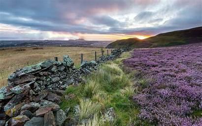 Scotland Desktop Scottish Heather Wallpapers Nature Backgrounds