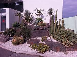 Plantes Vivaces Pour Massif : massif plante grasse no46 montrealeast ~ Premium-room.com Idées de Décoration