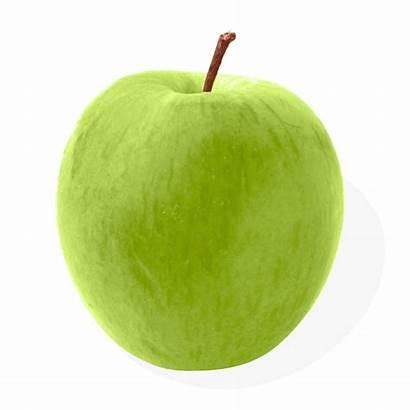 Apple Transparent Apples Pngimg Purepng Fnv Pngstock