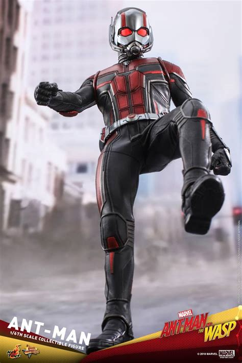 ant man   wasp  scale ant man hot toys