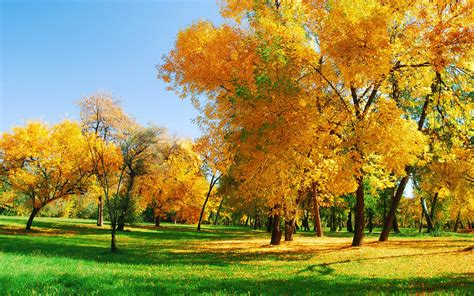 beautiful natural images   desktop  wow style
