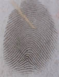 Ridge Ending Fingerprint Minutiae