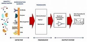 1  Schematic Diagram Of Biosensor Comprising Three