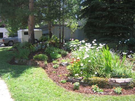 backyard berm 17 best images about newest project a berm on pinterest perennials front yards and spring