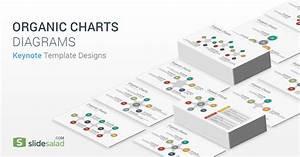 Organic Charts Diagrams Keynote Template