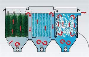 Filtration Biologique Pour Bassin A Poisson : filtre bassin filterline bed 60m3 expert bassin expert ~ Premium-room.com Idées de Décoration