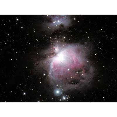 Orion Nebula - Pics about space
