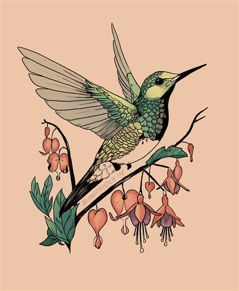 are hummingbirds color blind color blindness correction