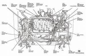 2003 Escape Engine Diagram