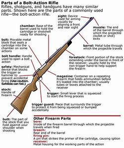 Bb Rifle Diagram