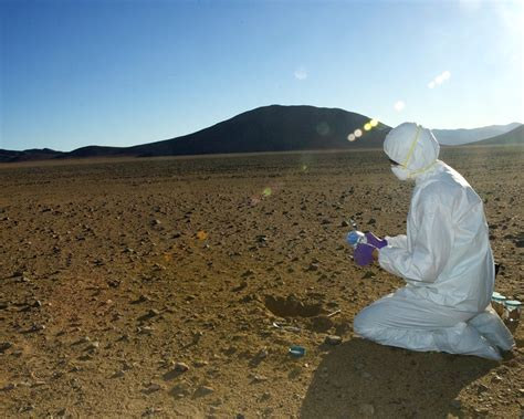 Fossil Preservation In The Driest Place On Earth Nasa