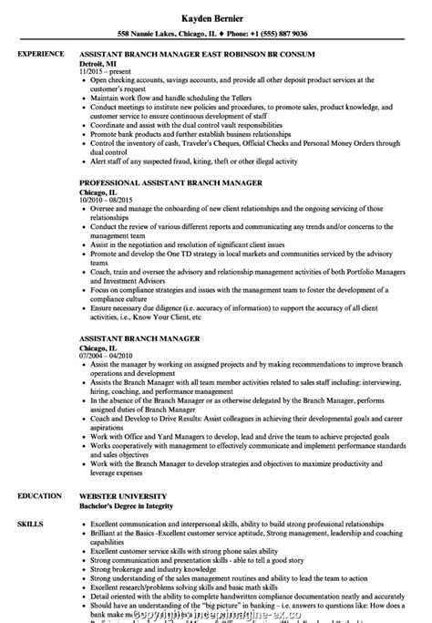 Resume For Assistant Manager Position by Styles Credit Union Branch Manager Resume Sle Branch