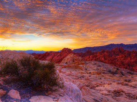 valley  fire state park overton nevada landscape sunrise