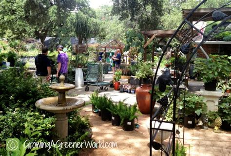 garden centers here independent garden centers growing a greener world tv