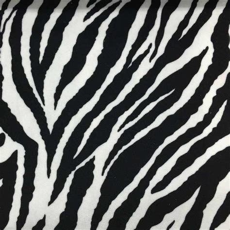 safari baby zebra pile velvet upholstery fabric