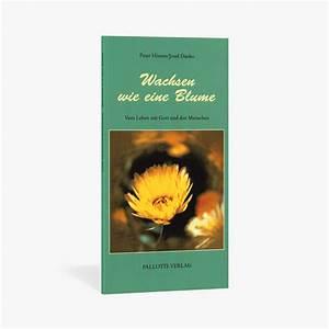 Liebe Ist Wie Eine Blume : unendlichkeitszeichen aufkleber unendliche liebe pallotti verlag shop ~ Whattoseeinmadrid.com Haus und Dekorationen