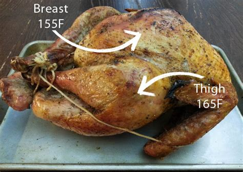 temp of turkey 4 turkey cooking tips time temperature racks position noshonit