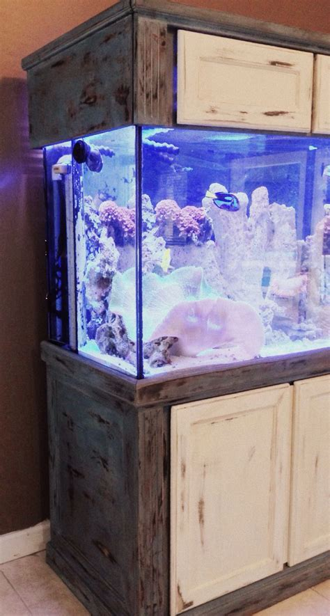 painted fish tank milk paint layere   fish tank