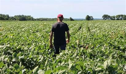 Farmers Trump Farmer American Fields Tariffs Illinois