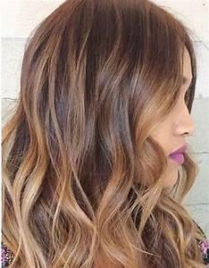 Ombré Hair Cuivré : ombr hair noisette ombr hair les plus beaux d grad s ~ Melissatoandfro.com Idées de Décoration