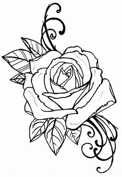 Coloring Tattoo Rose Digital Pages Outline Flower